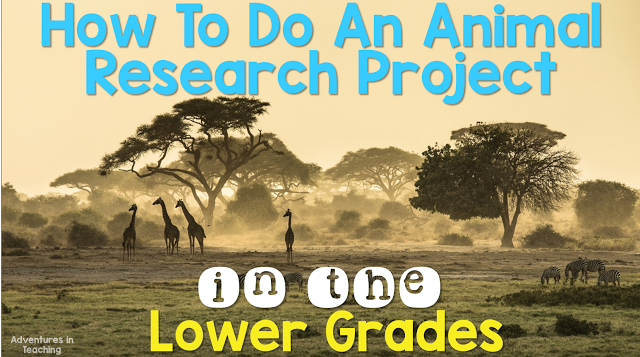 How-To-Do-An-Animal-Research-Project-in-the-Lower-Grades